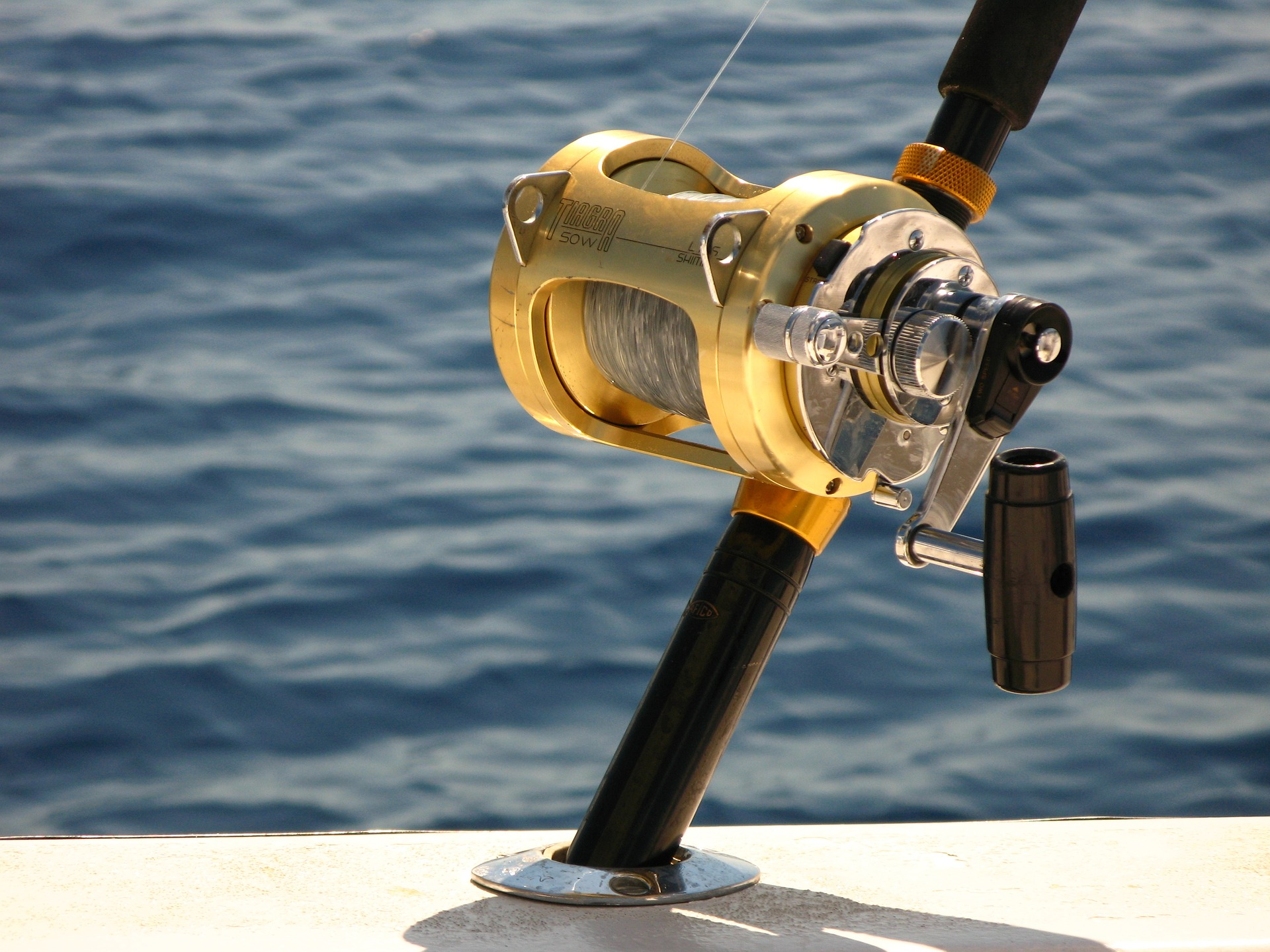 Best Deep Sea Fishing Around the World